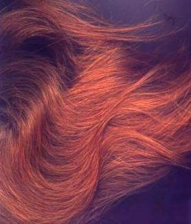 Henna for Hair: color gray hair with henna, indigo and other safe ...