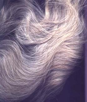 Henna For Hair Color Gray Hair With Henna Indigo And Other Safe